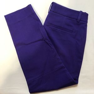 Purple Dress pants
